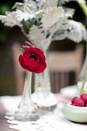 Red Ranunculus and Dusty Miller