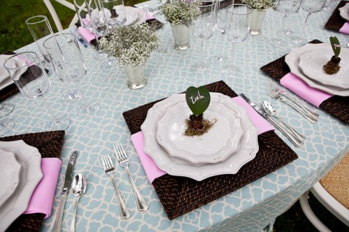 Succulent and Moss Place Setting
