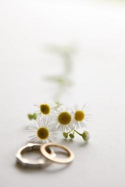 Daisy-Wedding-Ring-Shot