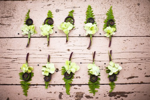 Hydrangea-and-Monkey-Tail-Boutonnieres