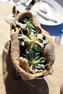 Succulent-and-Burlap-Wedding-Centerpiece