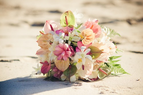 Fiji Destination Wedding Castaway Island