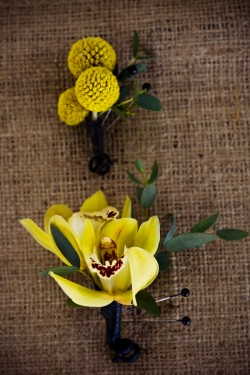 Yellow-Orchid-Boutonniere