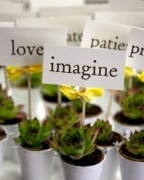 Succulent-Wedding-Favors