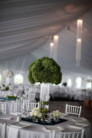 White and Green Tent Reception