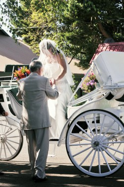 Bride-in-Carriage