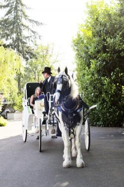 Wine-Country-Farm-Oregon-Wedding-Deyla-Huss-Photography-19
