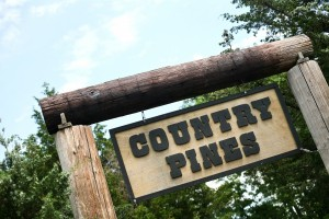 country_pines