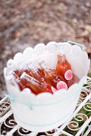 Pink-Izze-Soda
