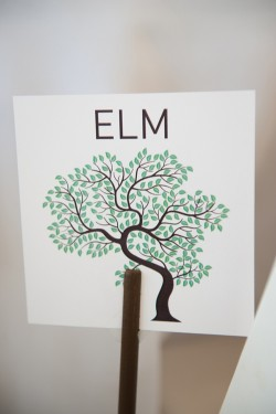 Tree-Table-Card