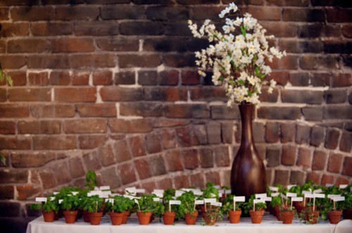 Potted-Plant-Escort-Cards