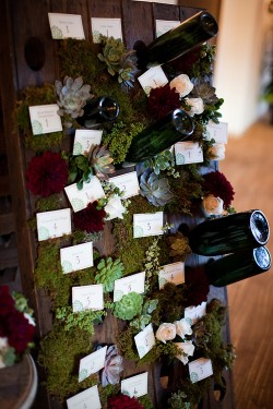 Succulent-Wine-Display