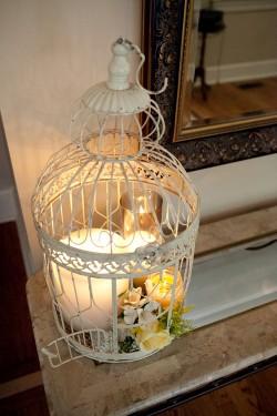 White-Birdcage
