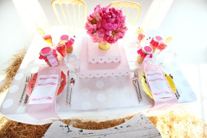 Pink-County-Fair-Theme-Party