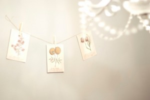 Seed-Packet-Garland-Wedding-Decor-Ideas