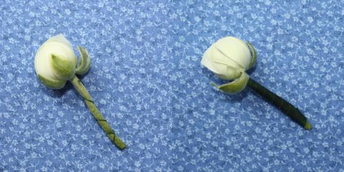 wire-a-flower-stem