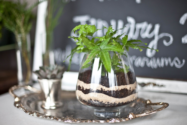 DIY-Terrarium-Centerpiece-30