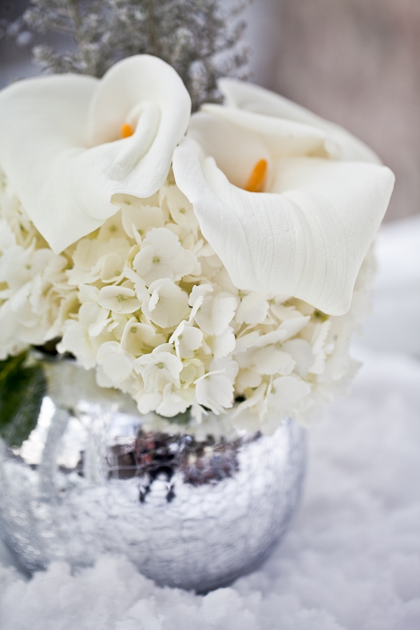 Winter white centerpiece silver vase elizabeth anne