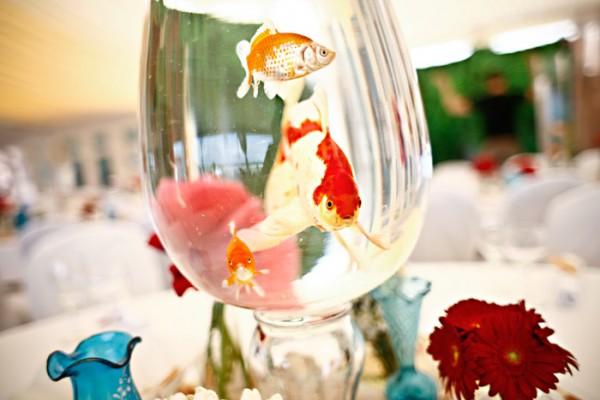 Fish-Centerpiece