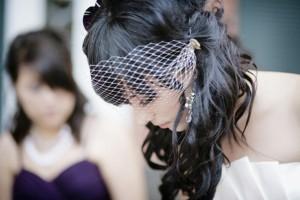 Birdcage-Hair-Fascinator