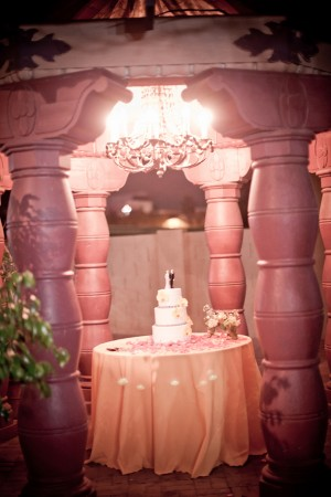 Cake-Display-Pavilion