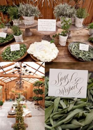 Herb-Wedding-2