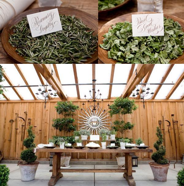 Herb-Wedding1