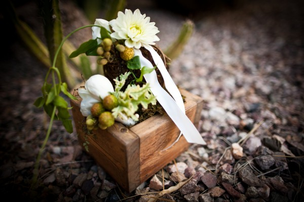 Miniature-Garden-Centerpiece