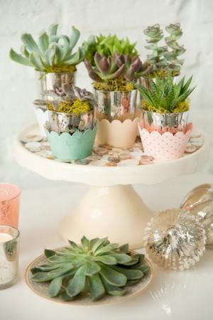 Succulents-Wedding-Favors