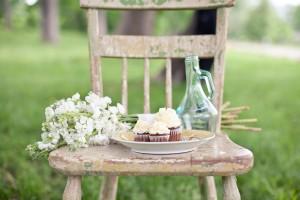 Cupcakes-Ampersand-Photography-Bridal-Shoot