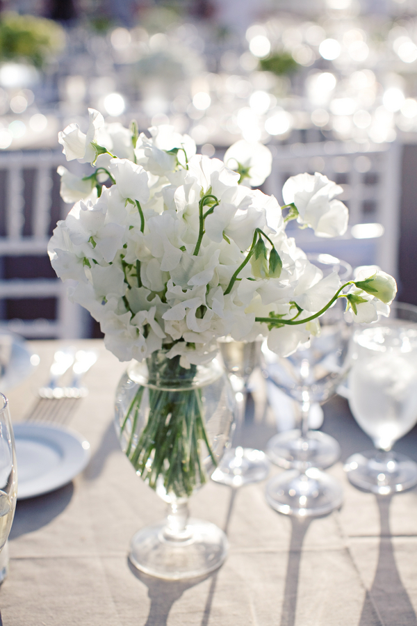 White sweet pea centerpiece elizabeth anne designs the wedding blog white sweet pea centerpiece mightylinksfo Gallery