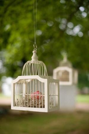 Hanging-Birdcages