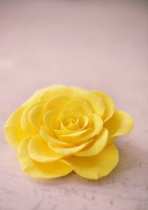 Yellow-Hair-Flower