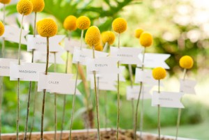 Billy-Ball-Flag-Escort-Cards