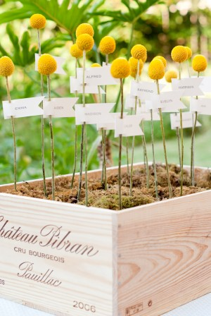 DIY-Billy-Ball-Moss-Escort-Card-Display
