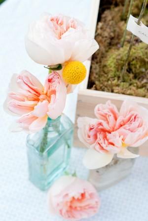 Pale-Pink-Ranunculus