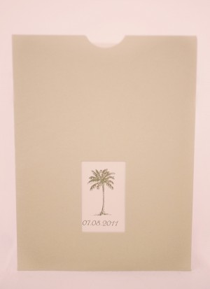 Palm-Tree-Programs
