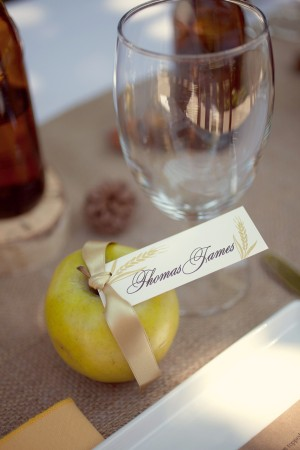 Apple-Place-Cards