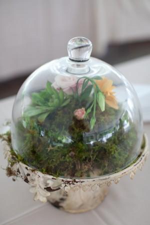 Moss-Terrarium-Centerpiece