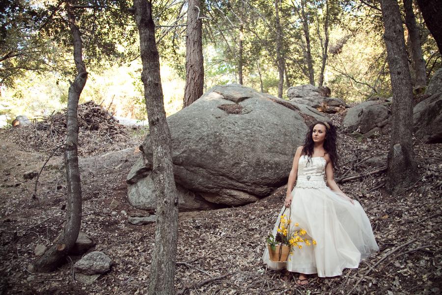 Wedding in the woods elizabeth anne designs the wedding for Wedding in the woods california