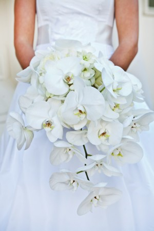 Cascading-White-Orchid-Bouquet