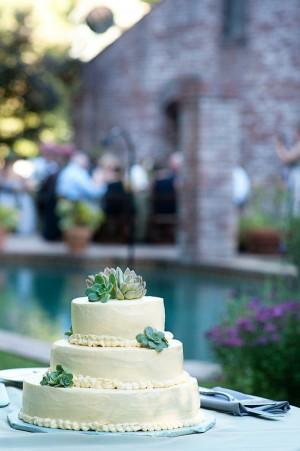 Succulent-Cake