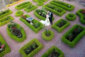 San-Francisco-Garden-Wedding-by-Danielle-Gillett-Photography-5