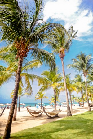 Puerto-Rico-Beach-Hammocks
