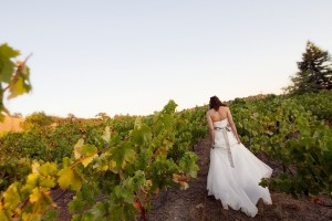 Casual-Rustic-California-Winery-Wedding-by-Julie-Mikos-Photography-3