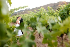 Elegant-Green-and-White-California-Winery-Wedding-by-Gillett-Photography-2
