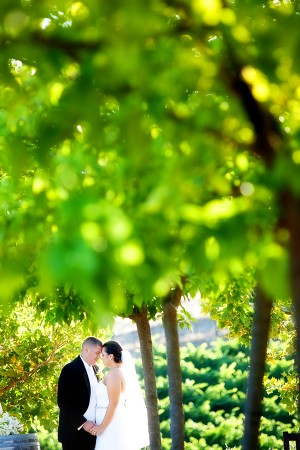 Elegant-Green-and-White-California-Winery-Wedding-by-Gillett-Photography-3