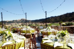 Natural-Lime-Green-Winery-Wedding-Reception
