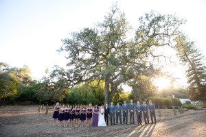 Purple-and-Grey-Wedding-Party