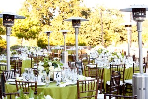 Rustic-Elegant-Green-and-White-Winery-Wedding-Reception